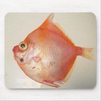 Boarfish Mouse Pad