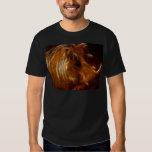 Boars beauty in the beast tee shirt