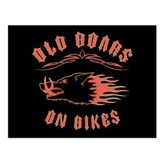 Boars on Bikes Postcard