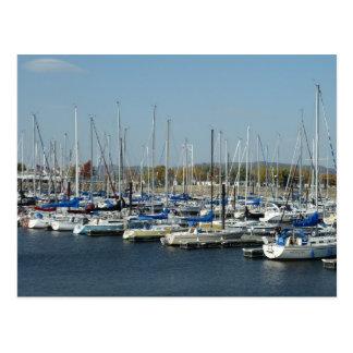 Boat Docks on Lake Pepin Postcards