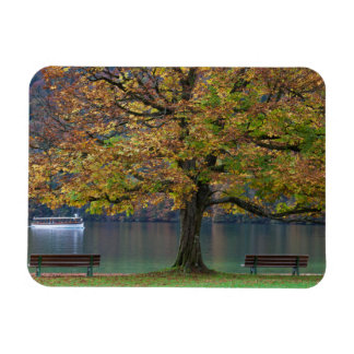 Boat on a lake in fall, Germany Magnet