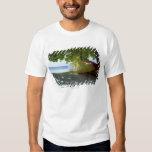 Boat Shirt