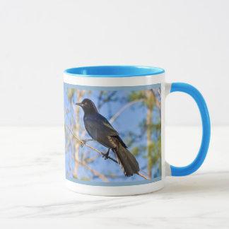 Boat-tailed Grackle Mug