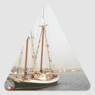 Boat Triangle Sticker