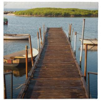 Boats and pier napkin