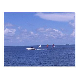 Boats - Anna Maria, Florida Postcard