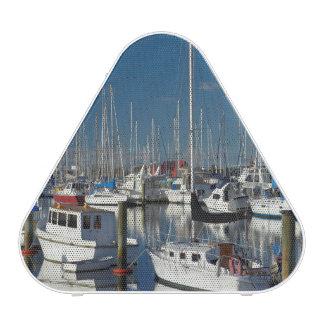 Boats at Nelson Marina Speaker