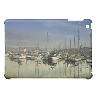 Boats In The Harbor iPad Mini Covers