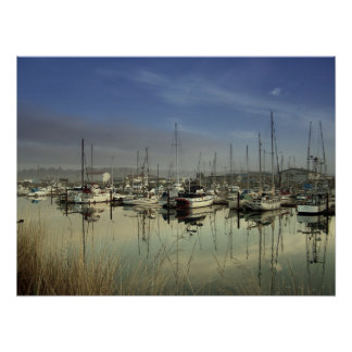 Boats In The Harbor Posters