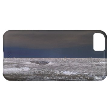 Beach Themed Boats in the ice sea from the coast iPhone 5C case