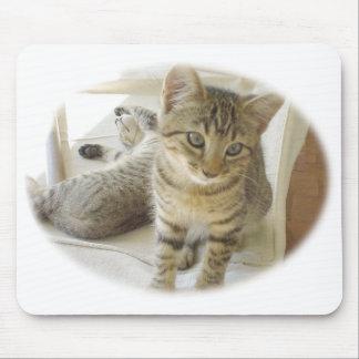 Bob Cat Mouse Pad