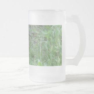 Bob en las maderas taza cristal mate