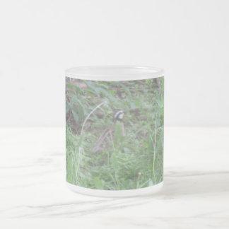 Bob en las maderas taza de cristal