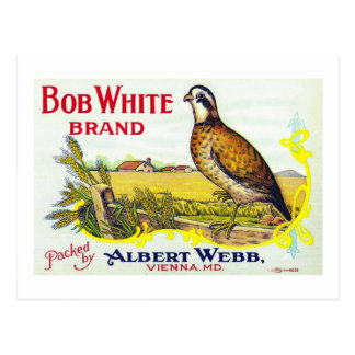 """""""Bob White Pumpkin Brand Canning Label"""" Card Post Cards"""