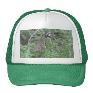 Bob White Trucker Hat
