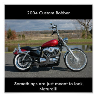 BoBBer , Somethings are just meant... - Customized Posters