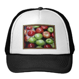 bobbing-for-apples.jpg trucker hat