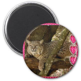 bobcat-00186 2 inch round magnet