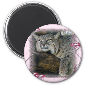 bobcat-292 copia 2 inch round magnet