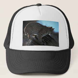 Bobcat backlit trucker hat