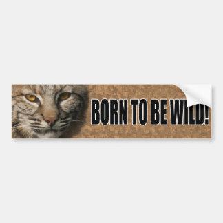 Bobcat Bumper Sticker - Born to be wild! Car Bumper Sticker