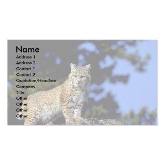 Bobcat Business Card Template