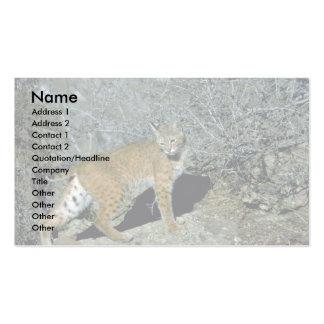 Bobcat Business Card Templates