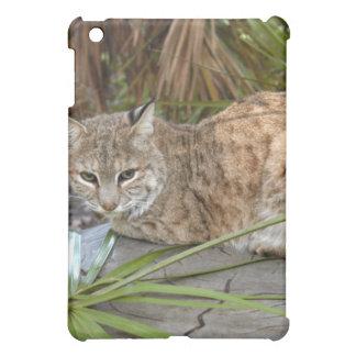 Bobcat  cover for the iPad mini