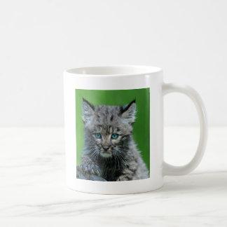Bobcat Eyes Aqua Beautiful Wild Cat Coffee Mug