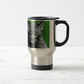 Bobcat Eyes Aqua Beautiful Wild Cat Travel Mug