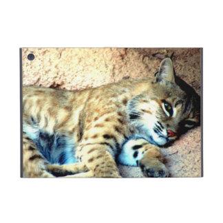 Bobcat Habitat iPad Mini Covers