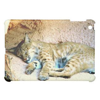 Bobcat Habitat iPad Case