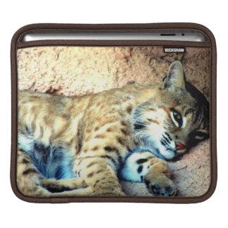 Bobcat Habitat iPad Sleeve