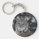 Bobcat in the Snow Key Chain