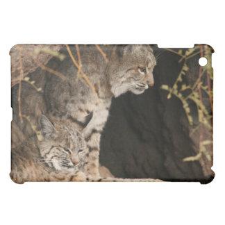 Bobcat iPad Case