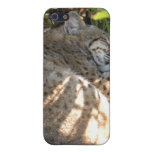 Bobcat iPhone Case Covers For iPhone 5