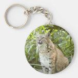 Bobcat Keychains