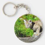 Bobcat Kitten Basic Round Button Keychain
