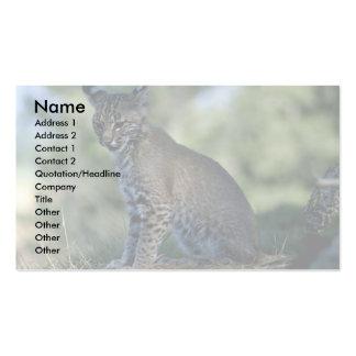 Bobcat-kitten Business Cards