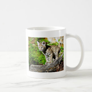 Bobcat Kitten Coffee Mug