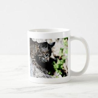 Bobcat Kitten on laying on a Hill Coffee Mug