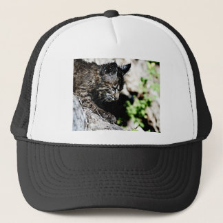 Bobcat Kitten on laying on a Hill Trucker Hat