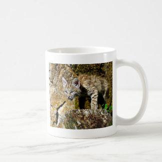 Bobcat Kitten on the Rocks Coffee Mug