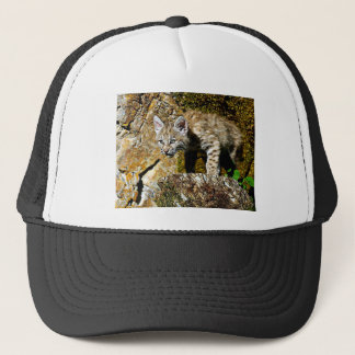 Bobcat Kitten on the Rocks Trucker Hat
