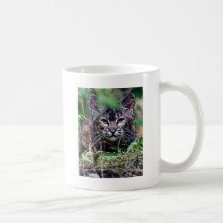 Bobcat Kitten Peering through the grass Coffee Mug