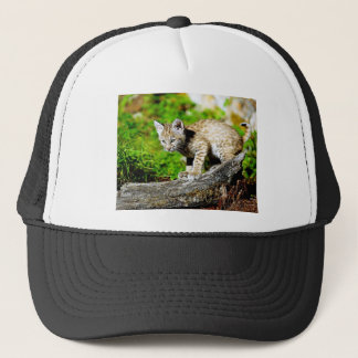 Bobcat Kitten Trucker Hat