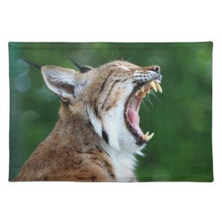 Bobcat, lynx beautiful close-up photo placemat
