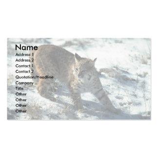 Bobcat on snow business card template