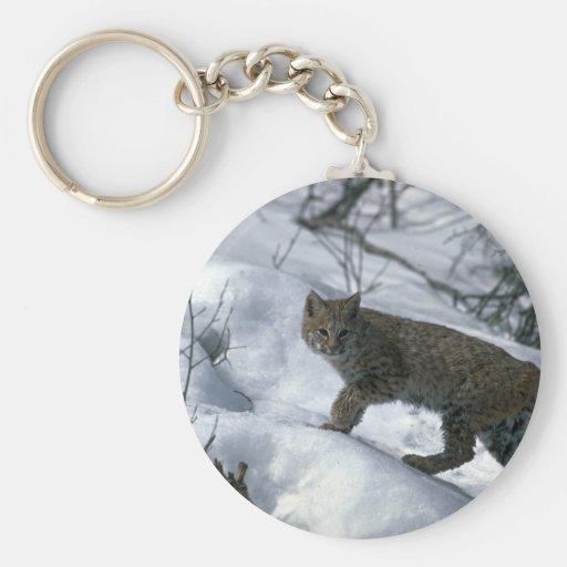 Bobcat on snow key chain