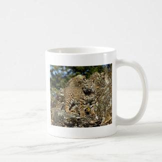 Bobcat on the Rocks Coffee Mug